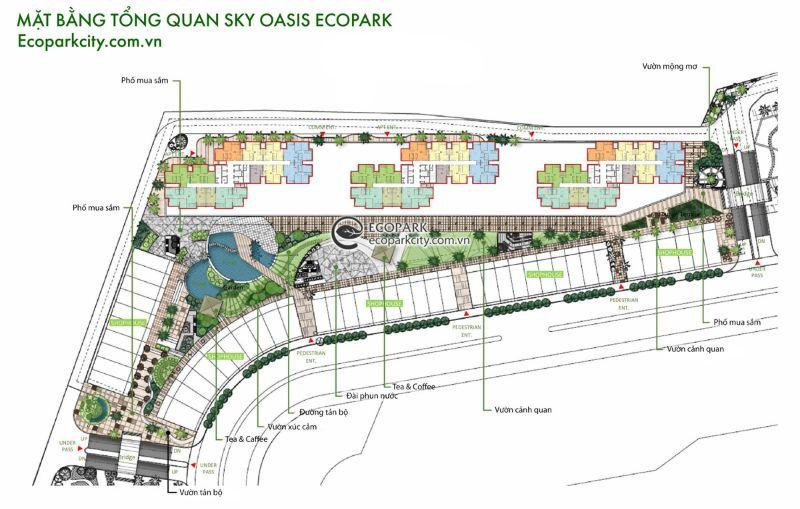 Mat bang tong the du an Sky Oasis Ecopark - SKY OASIS ECOPARK
