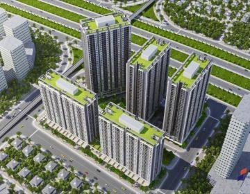 Thăng Long Capital
