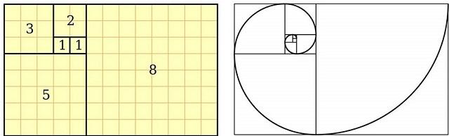 Kích thước đạt tỷ lệ vàng trong thiết kế (Nguồn: Internet)